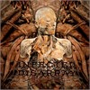 Infected Disarray - Disseminating Obscenity