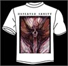 "Defeated Sanity - ""Dharmata"" Shortsleeve Tshirt"