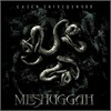 Meshuggah - Catch 33 (Limited Edition)