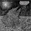 Ascended Dead - Abhorrent Manisfestation